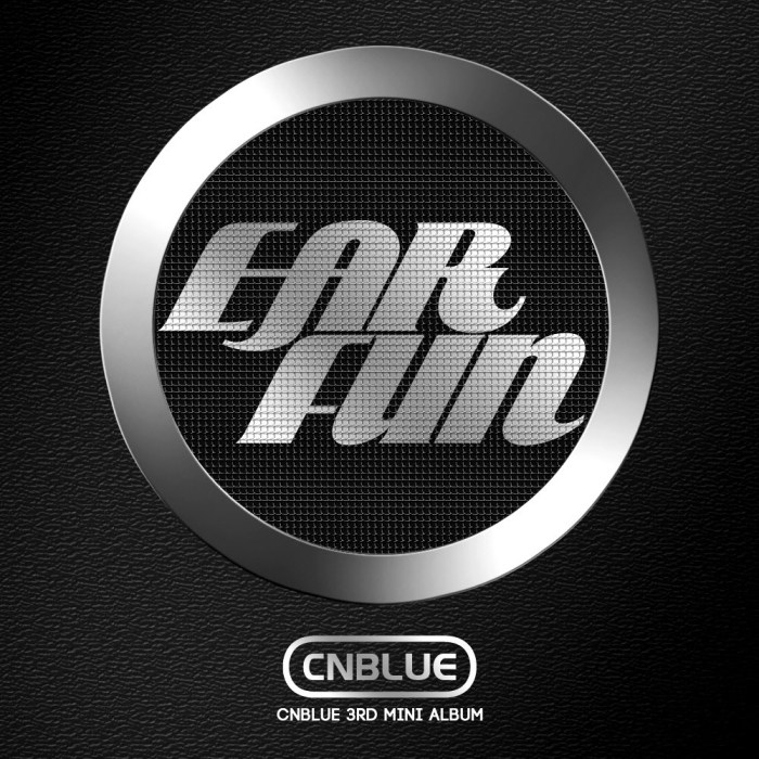 ear fun standard cover